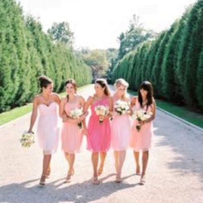 Spring 2015 Bridesmaid Dresses