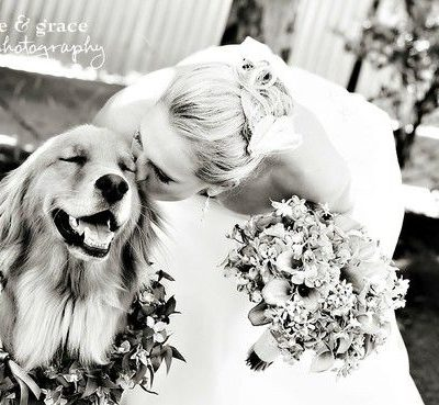 Including Your Pooch In Your Wedding